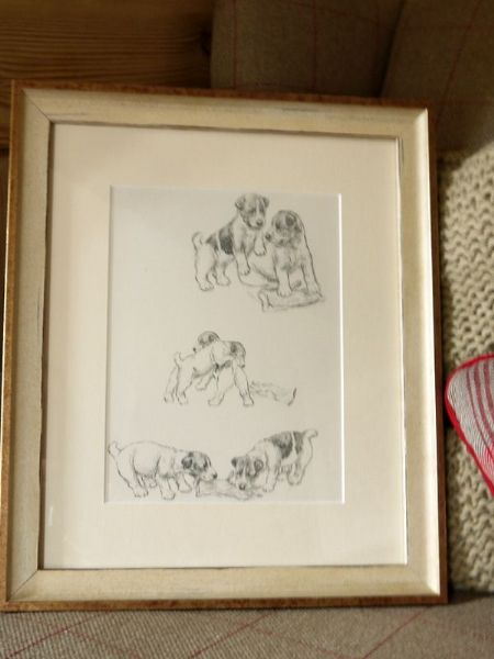 Terrier puppies playing with gloves 1940's print by K F Barker